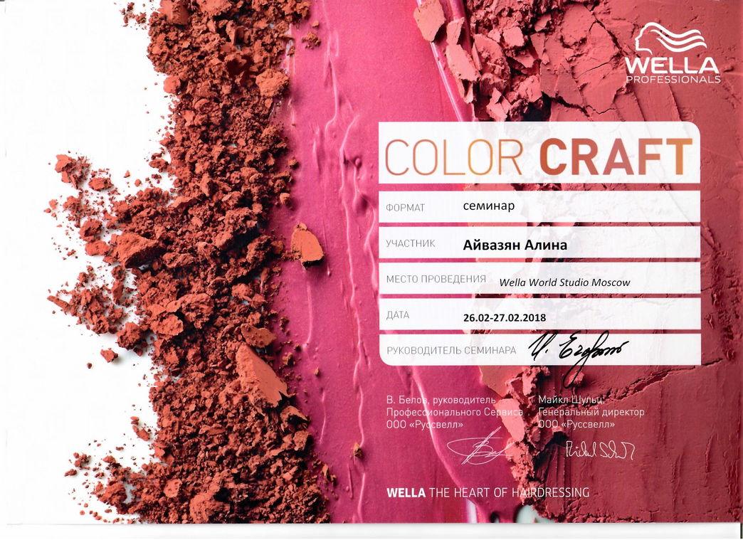 2018 color craft wella