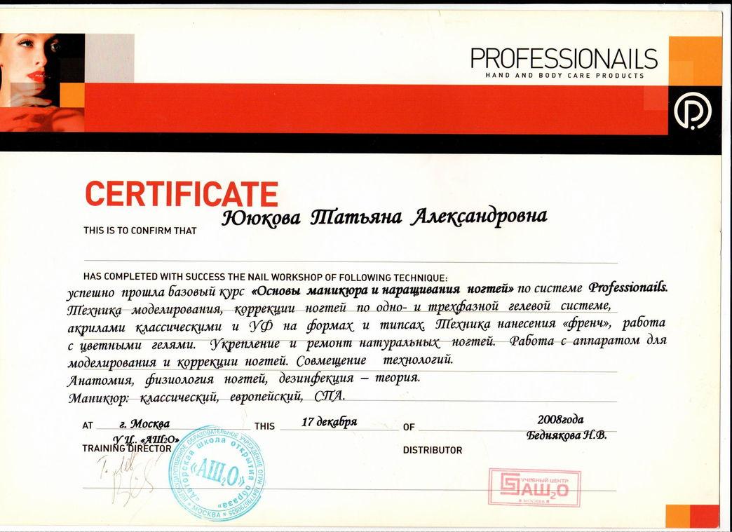 2008 Основы маникюра и наращивание ногтей по системе Professionails