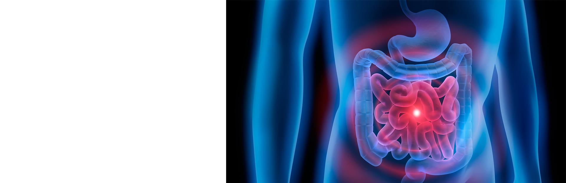 Оценка состояния инкреторной функции желудочно-кишечного тракта