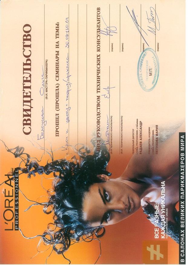"2004, Loreal Professional ""Ключ к цвету"""