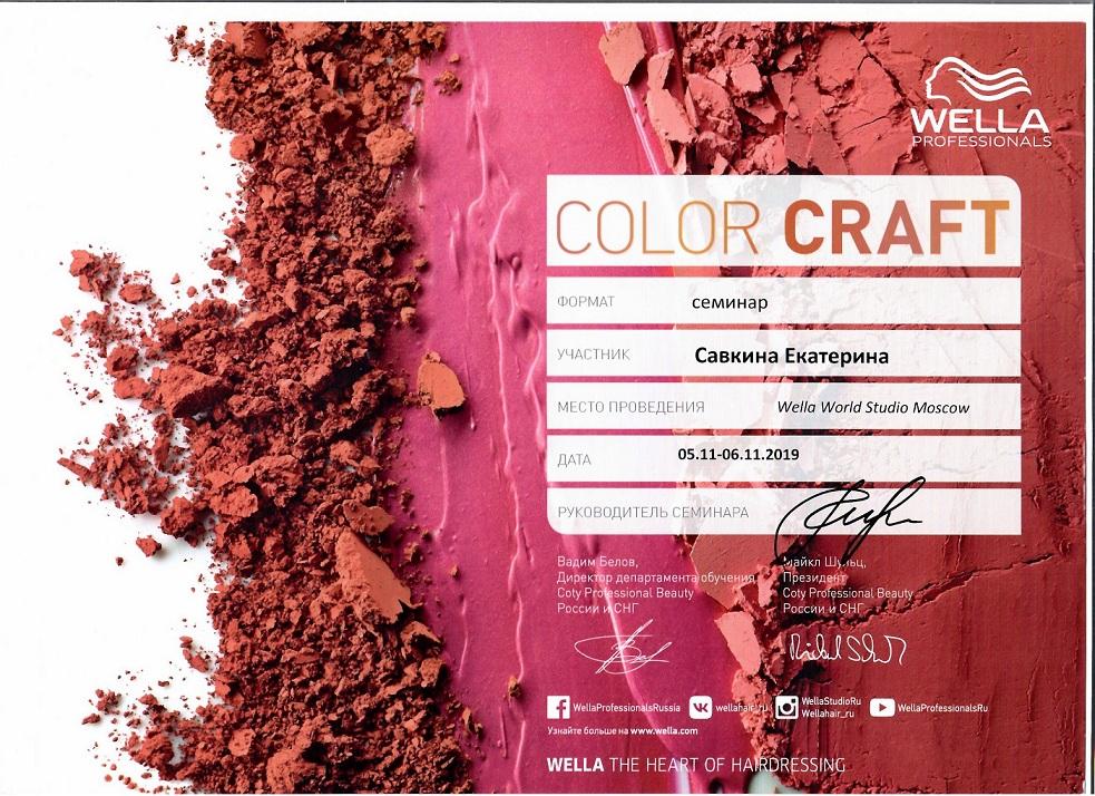 2019 color craft wella