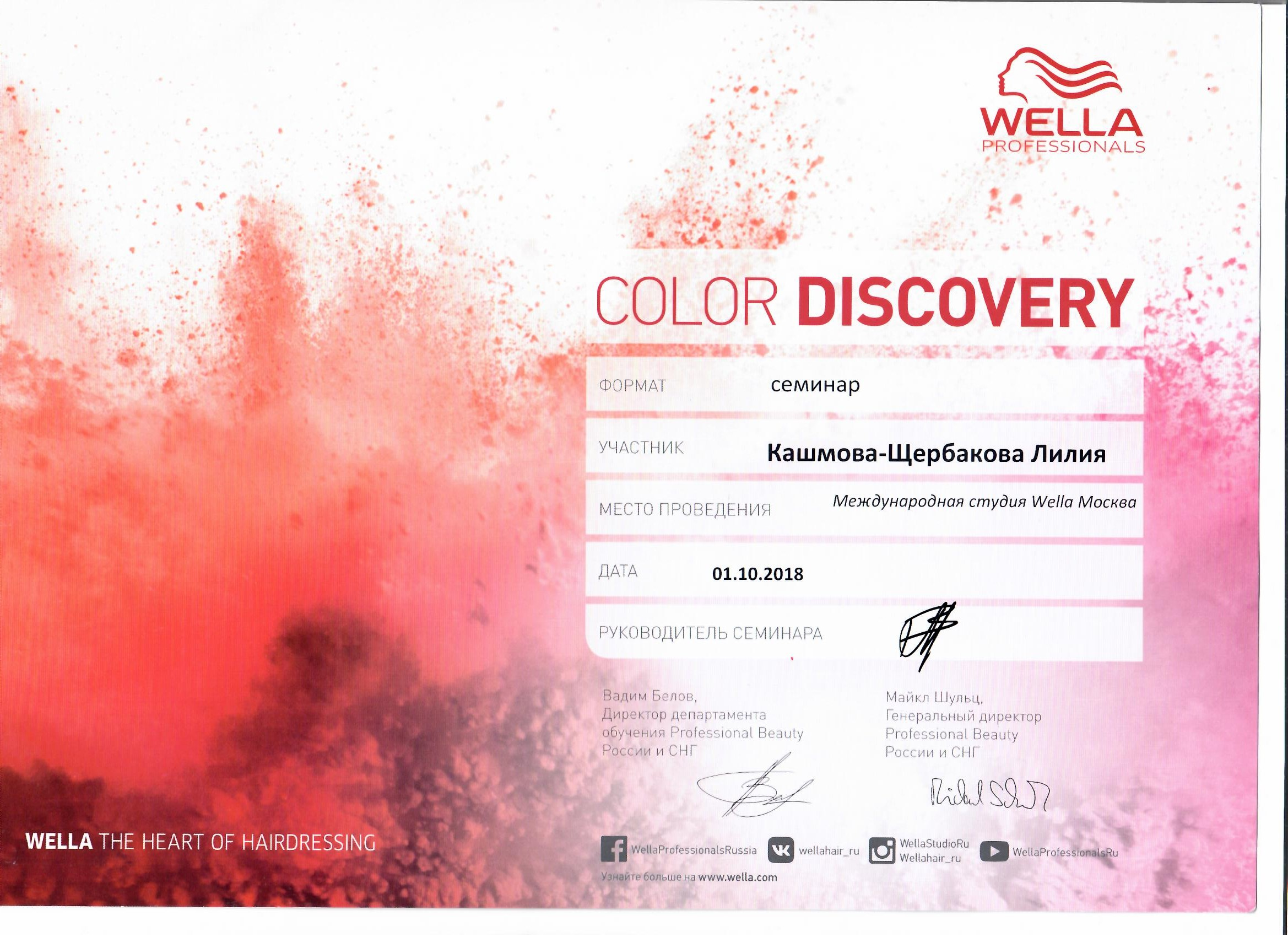 2018 color discovery wella