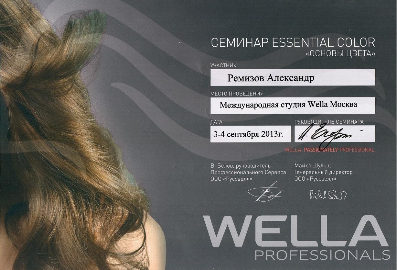2013 essential color wella
