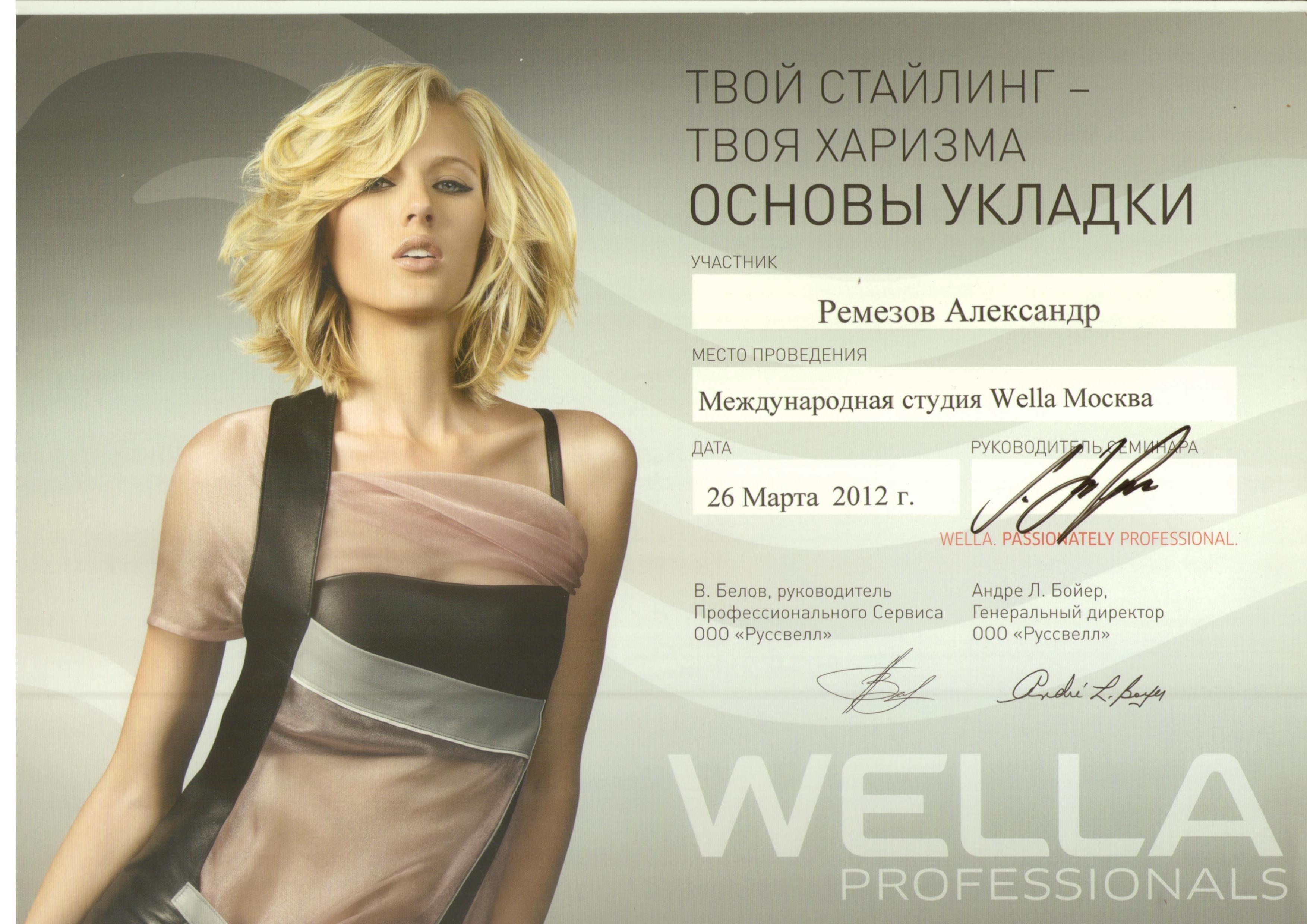 2010 основы укладки wella