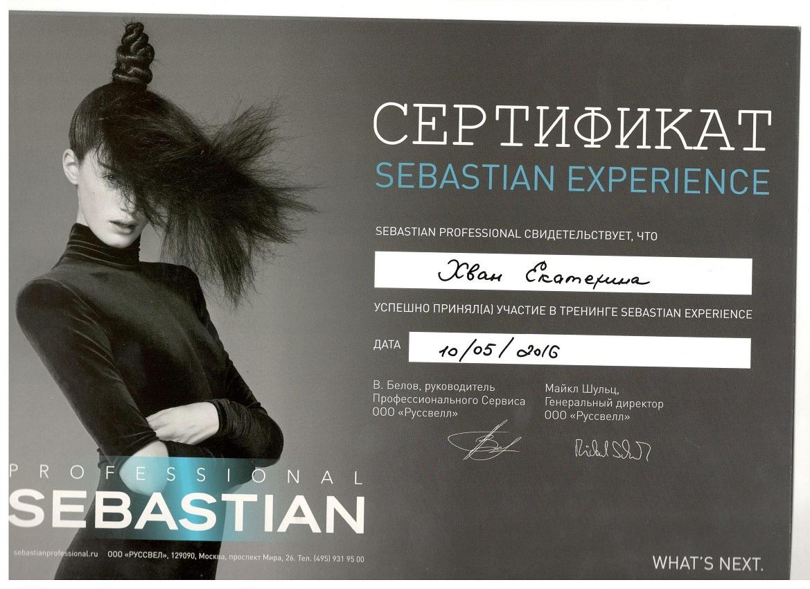 2016 sebastian experience