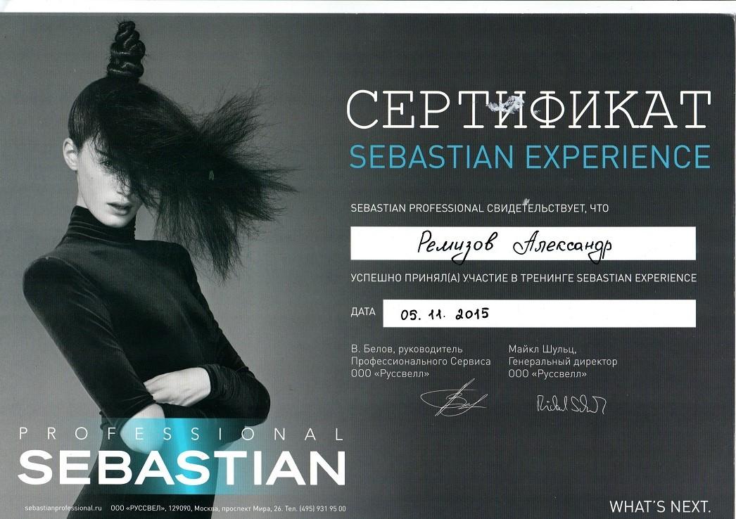 2015 sebastian experience