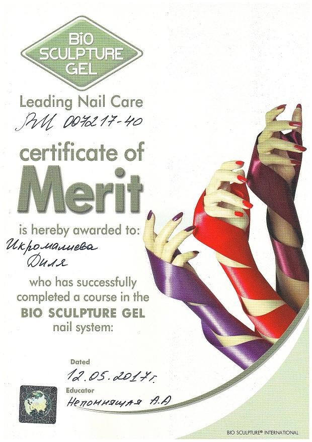 2017 bio sculpture gel