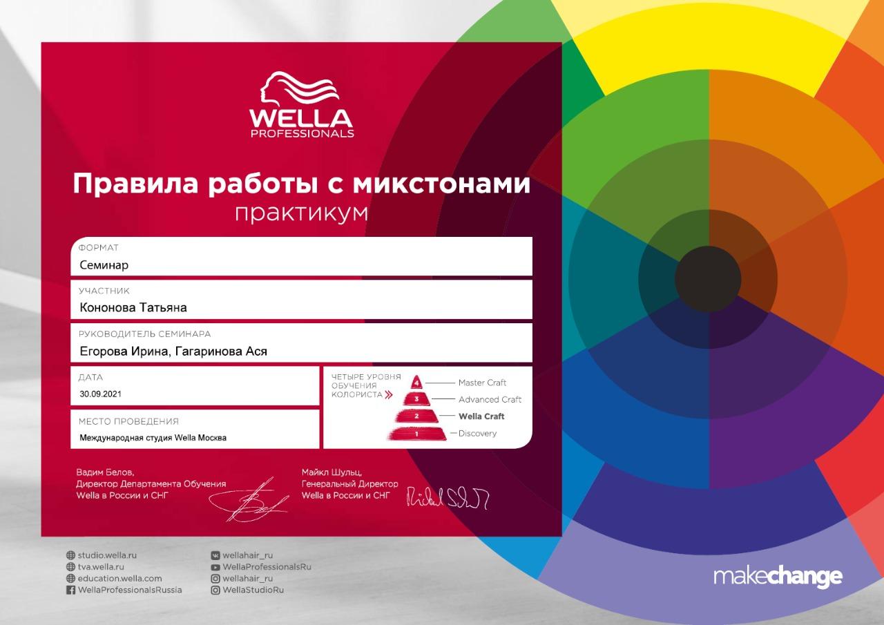 2021, Wella Professional, семинар Правила работы с микстонами