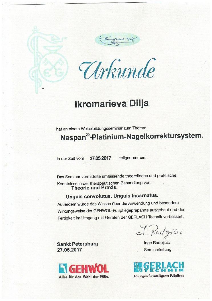 2017 обучение в Санкт-Петербурге Naspan-Platinium Nagelkorrektursystem
