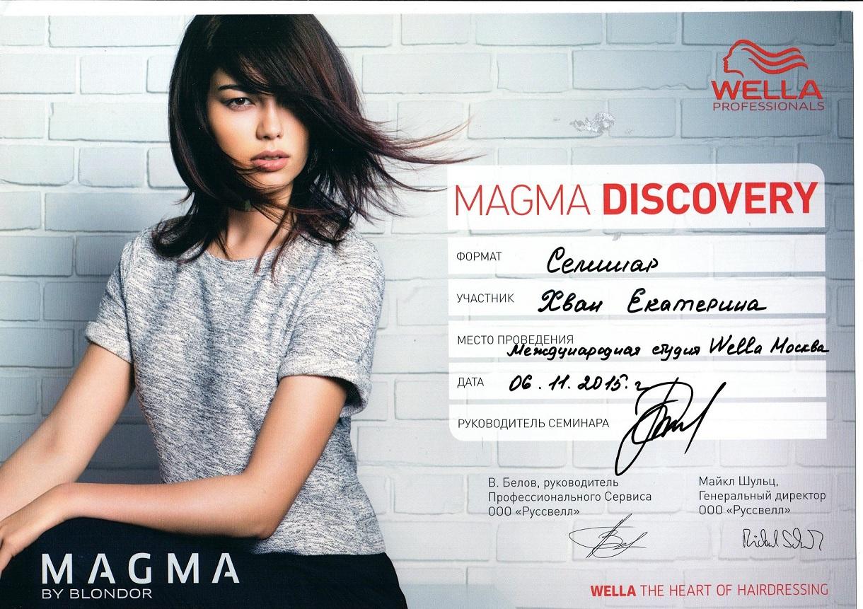2015 magma discovery wella