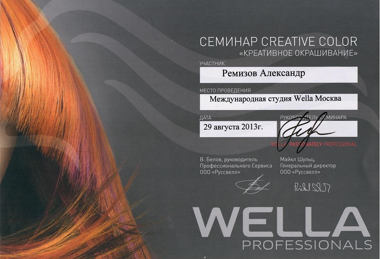 2013 creative color wella