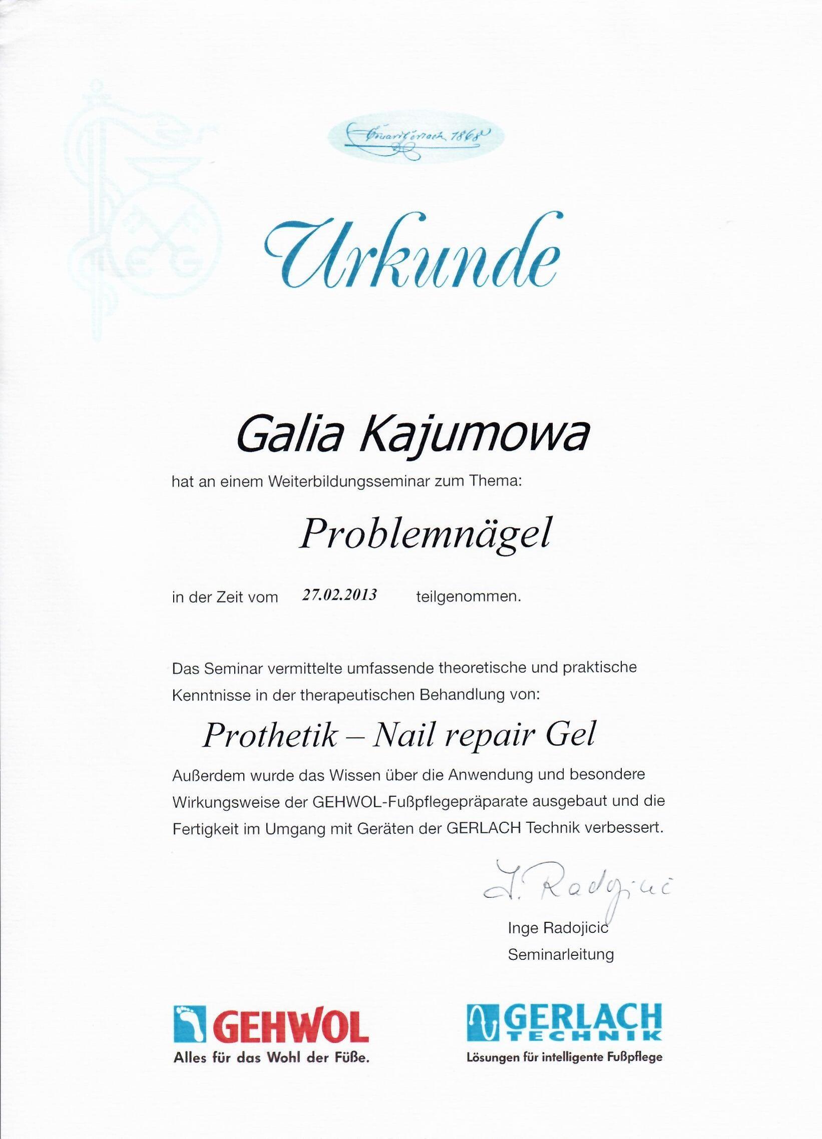 2013 Problemnagel