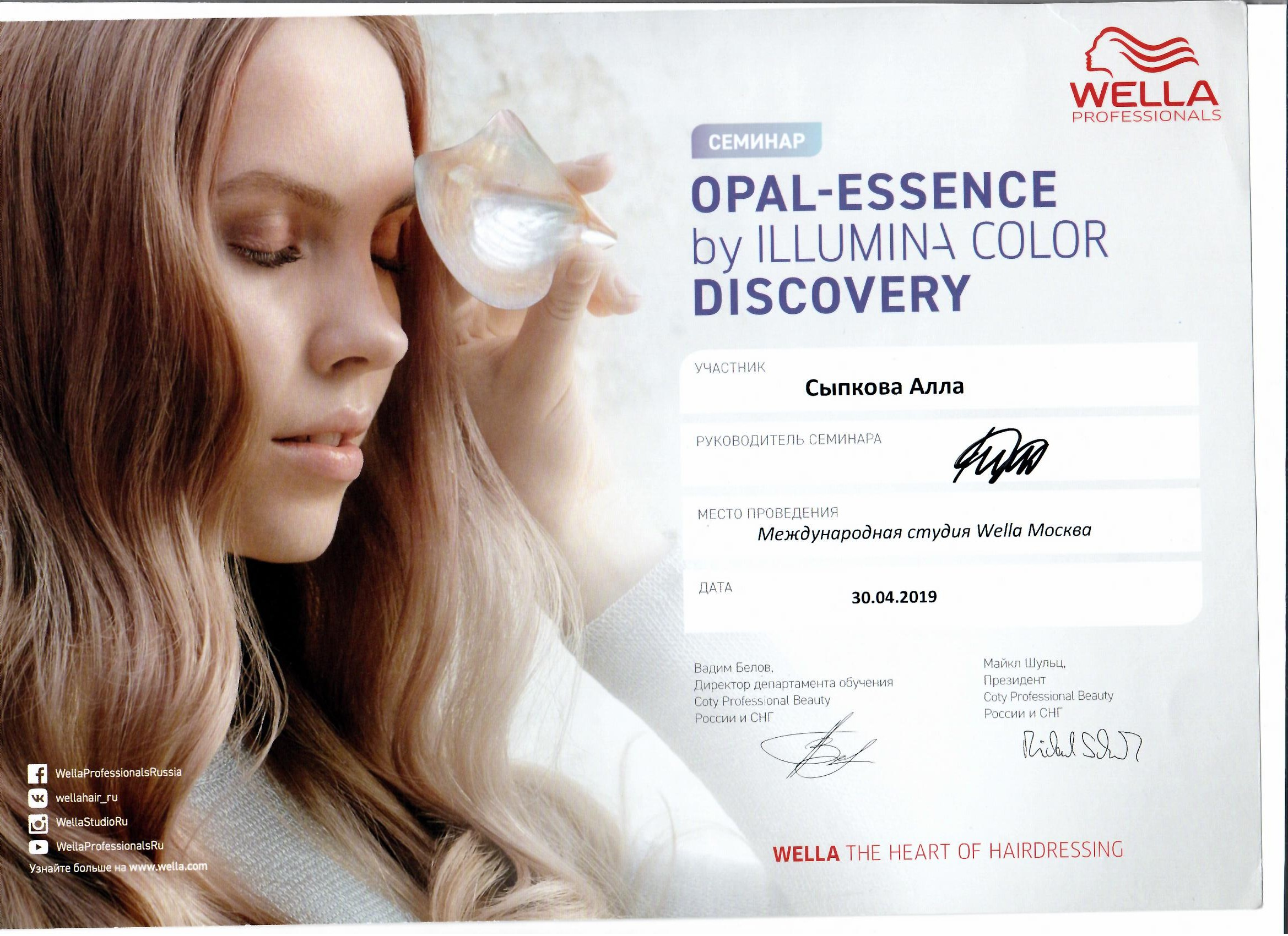 2019 opal-essence by illumina color discovery