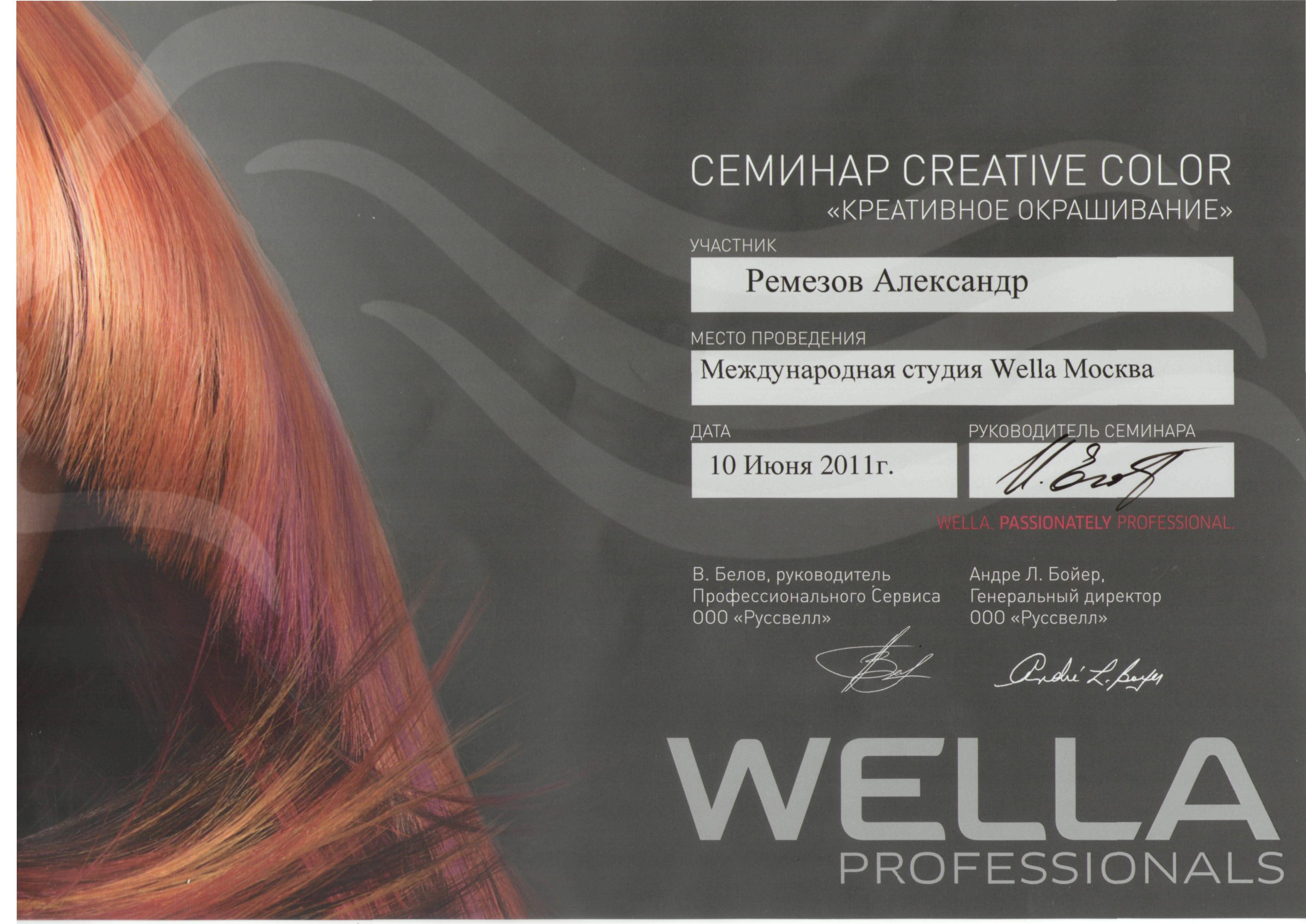 2011 креативное окрашивание wella