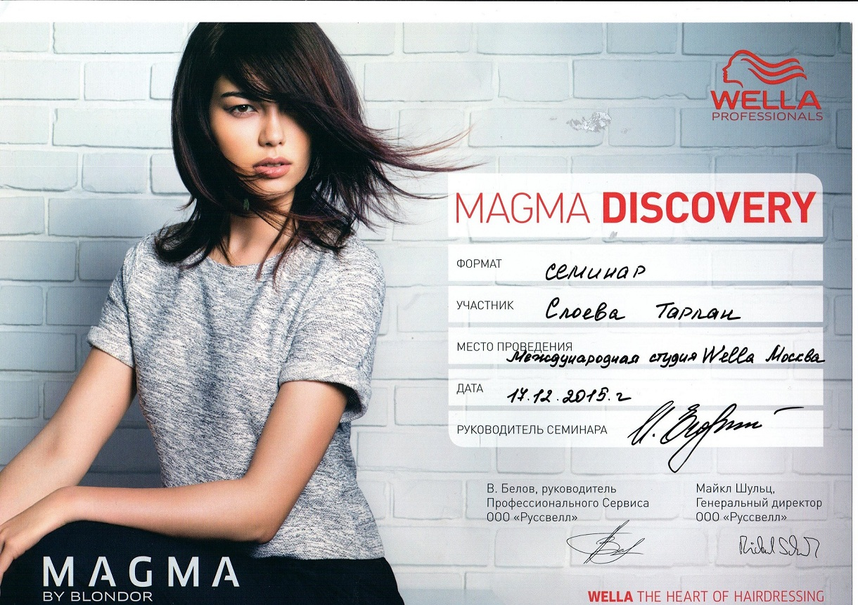 2015 magma discovery