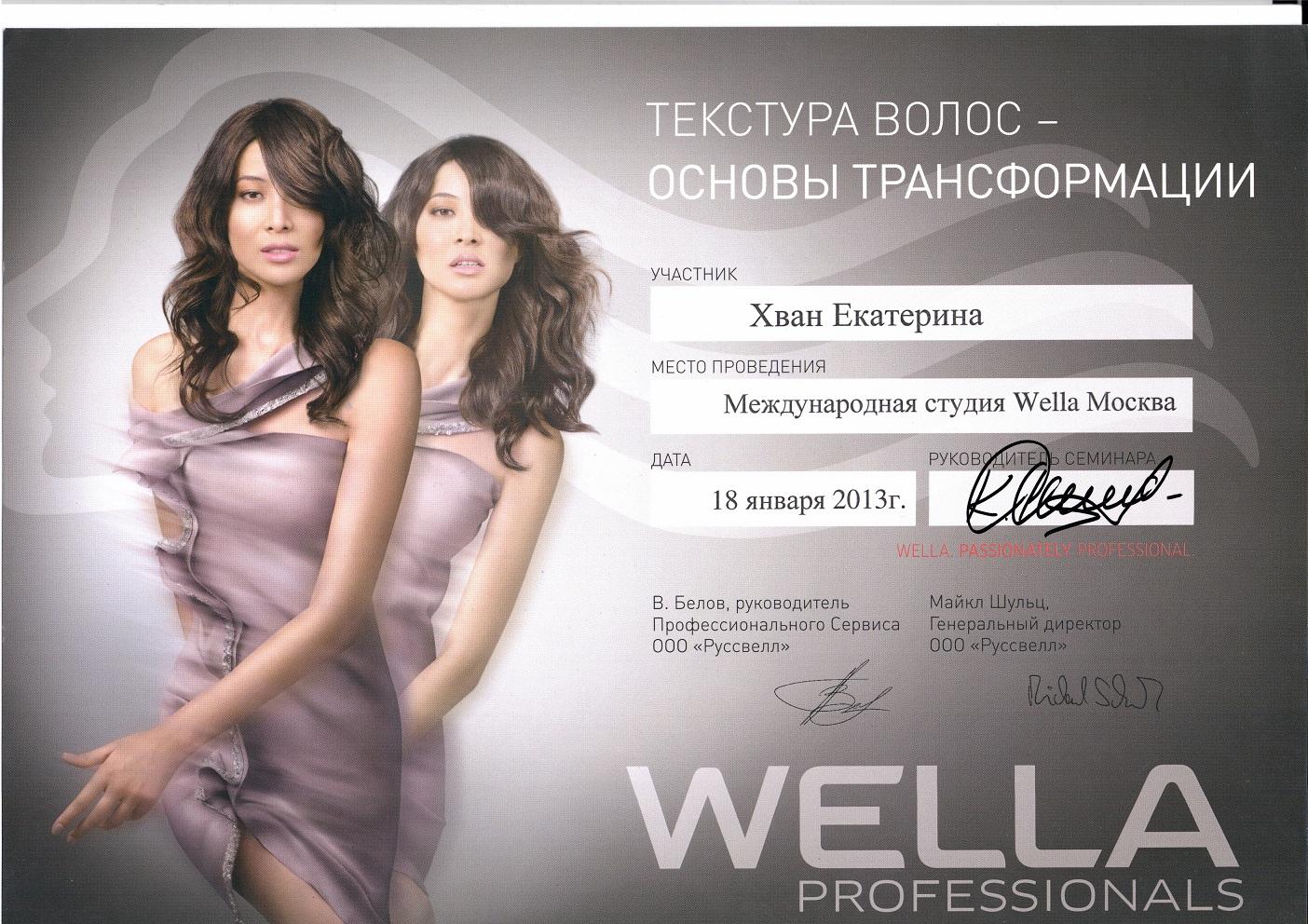 2013 текстура волос-основы трансформации wella