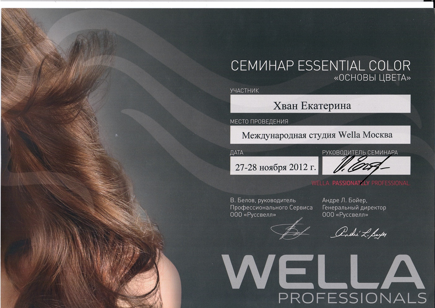 2012 основы цвета wella